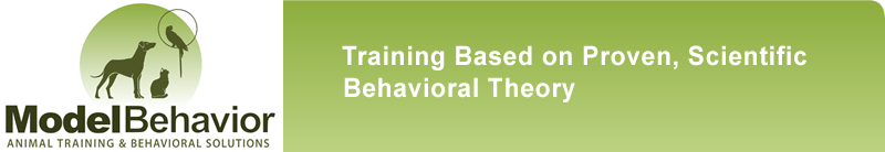 Brian Gisi's Model Behavior Animal Training